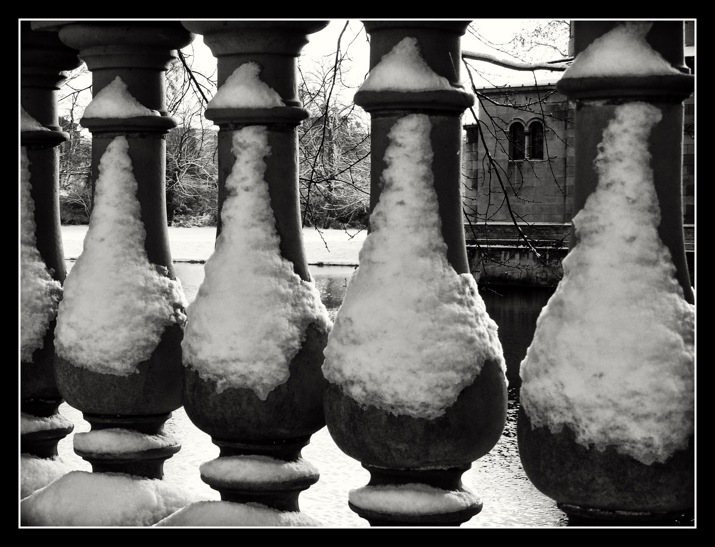 """"""" Traillen im Winter """""""