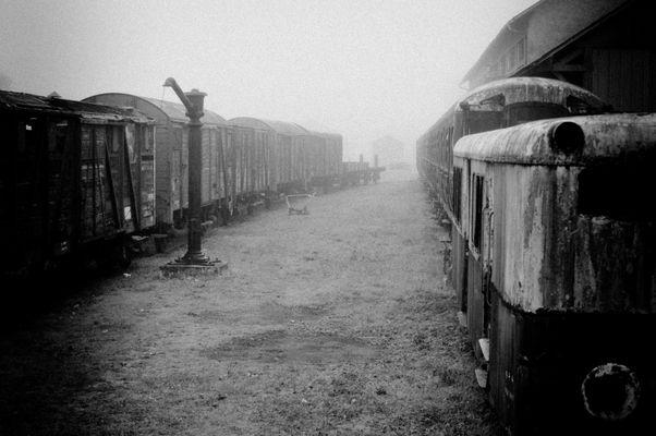 Train...