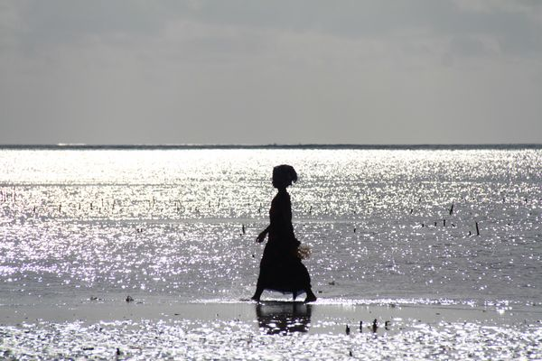 ....Tramonto a Zanzibar...