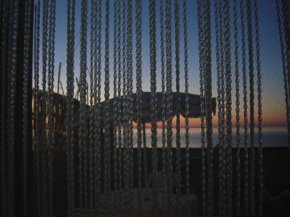 tramonto attraverso una rete