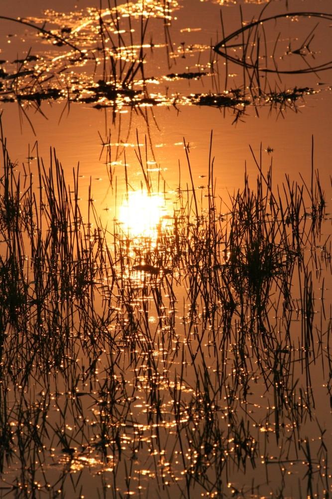 Tramonto nel delta dell'Okawango