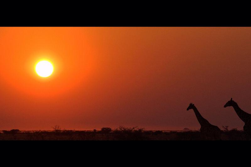 tramonto su Etosha