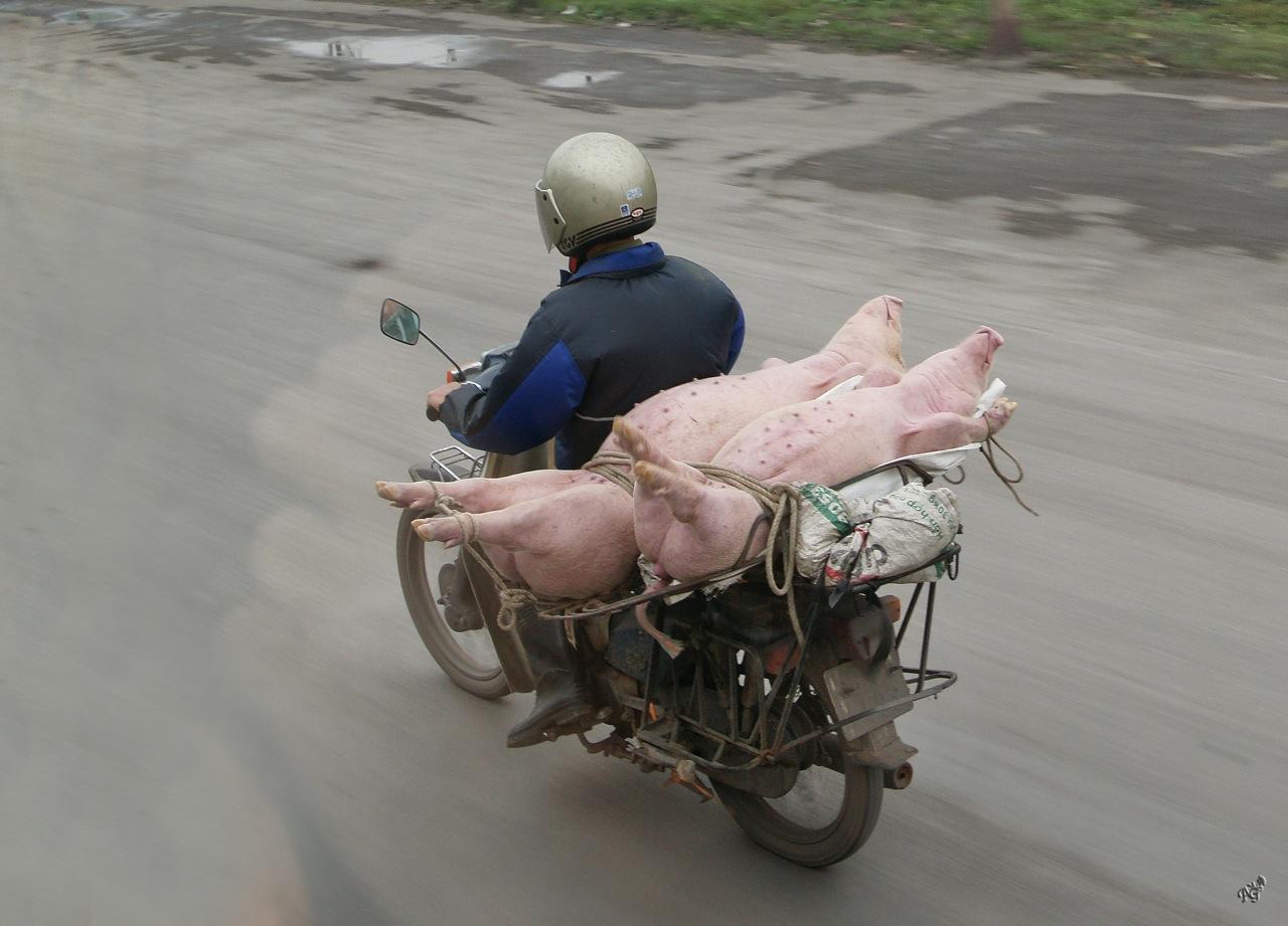 Transport en commun ....