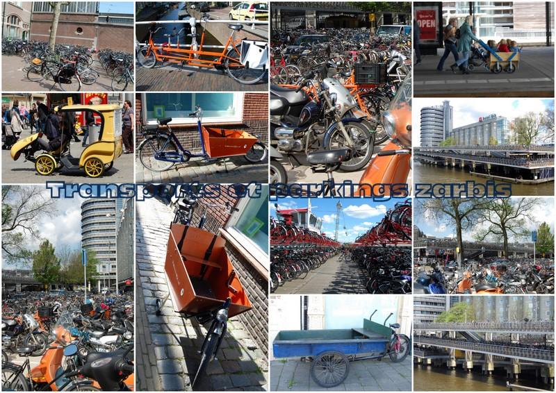 Transport et parking Hollandais