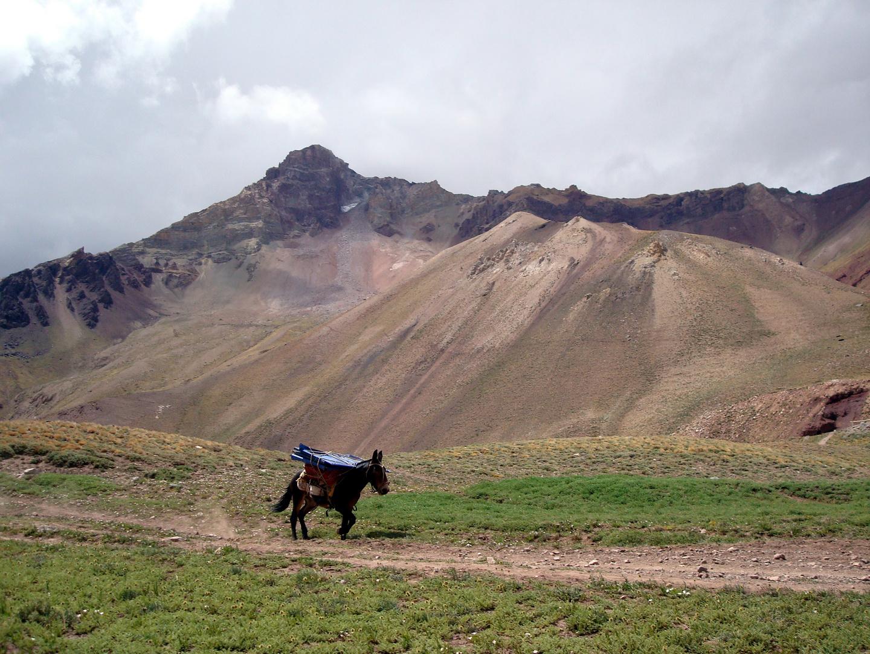 Transporte al Aconcagua