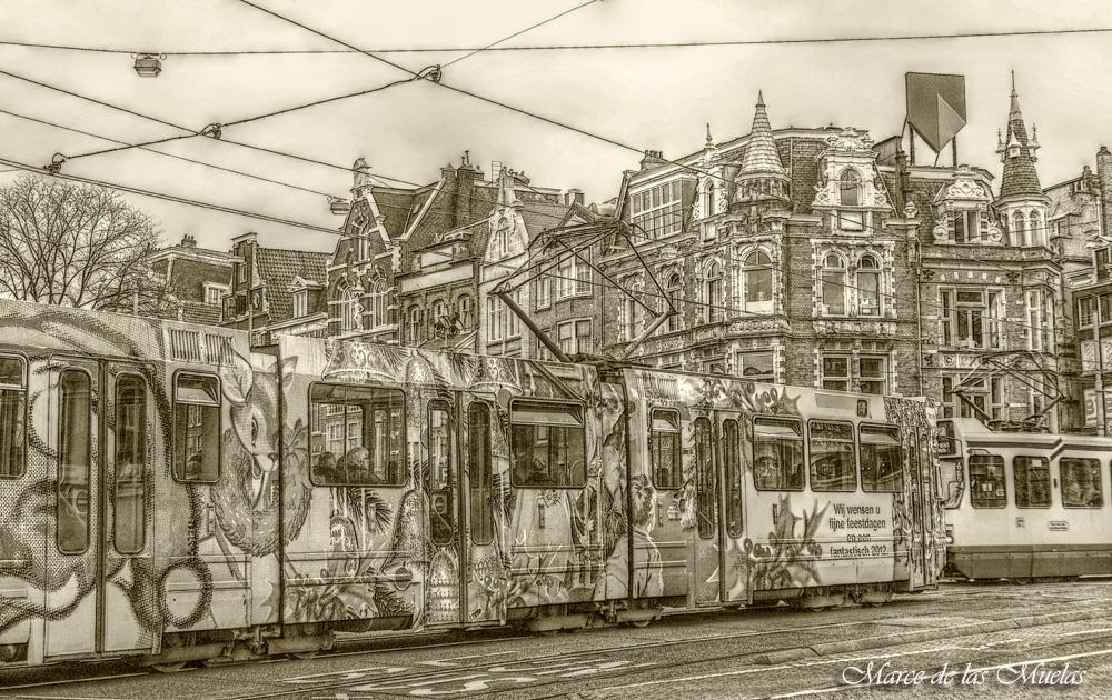 ...tranvias en Amsterdam...