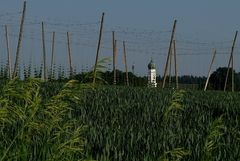 Trapp-Pils-Anbaugebiet