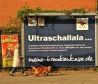 Trari-trara - Circus Ultraschallala kommt !