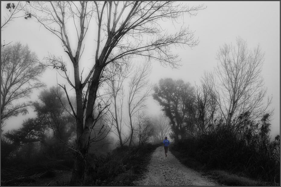 Tras la niebla
