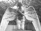 Trauender Engel ll