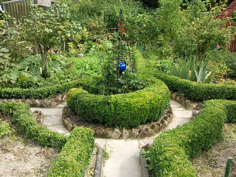 Traum Garten
