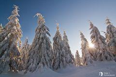 ***Traum vom Winter***