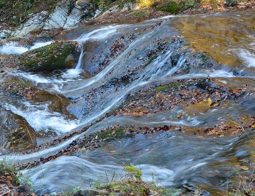 Traumbach im Bergwald