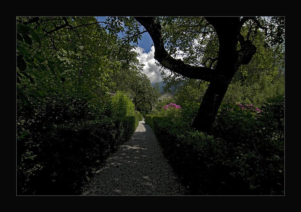 Traumgarten...