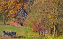 Traumhaft bunter Herbst