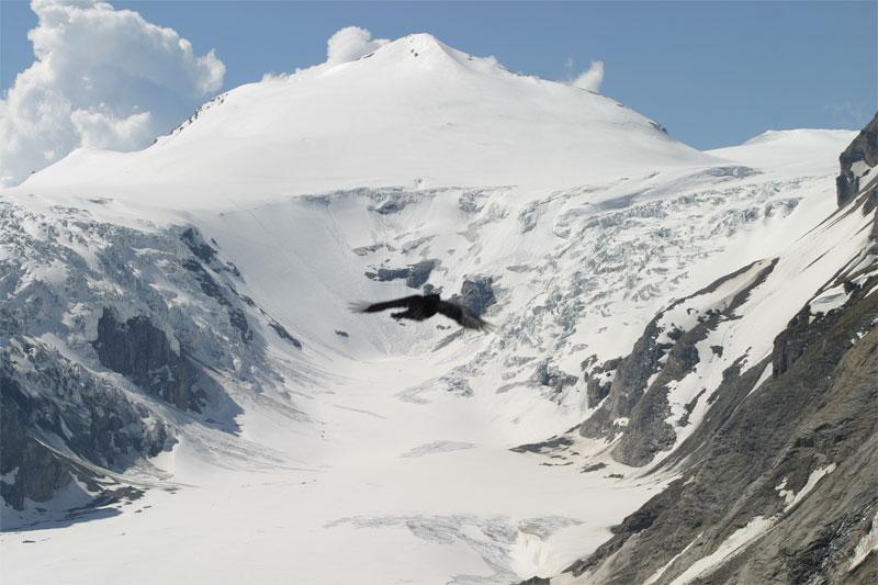Traumhafte Bergwelt I