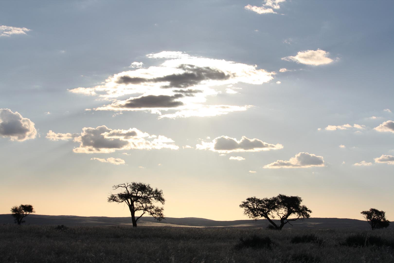 traumhafte Landschaft in Namibia