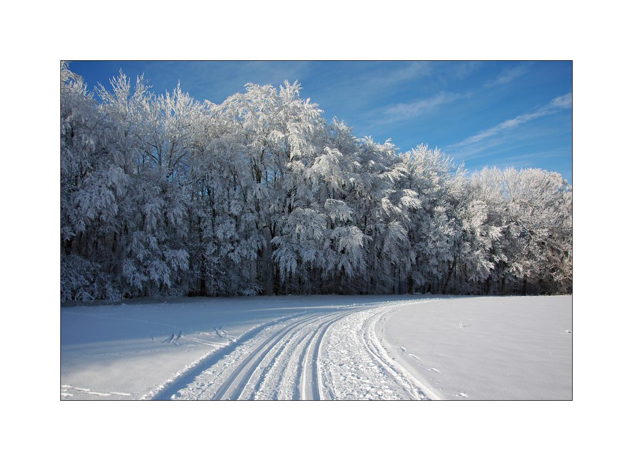 traumhafte Winterlandschaft III