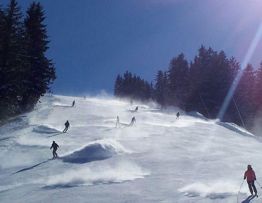 traumhafter Ski-Tag
