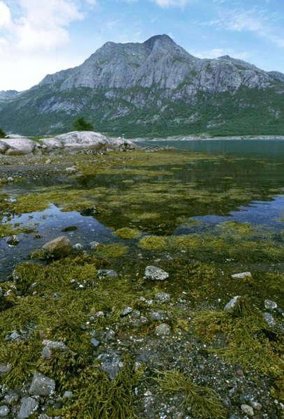Traumstraße am norwegischen Fjord