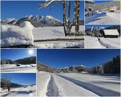 Traumwetter am Geroldsee 18. 1. 2016