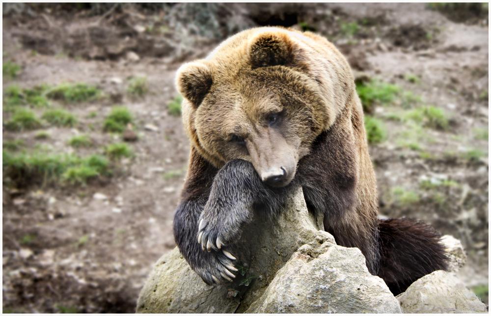 Traurig, Einsam ????.....