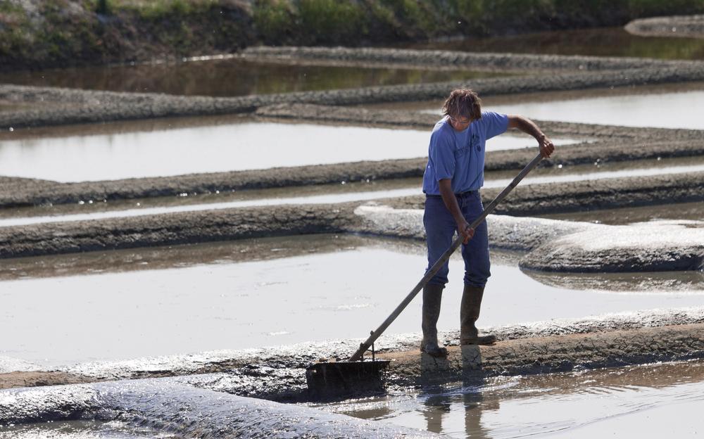 travail dans les marais salants