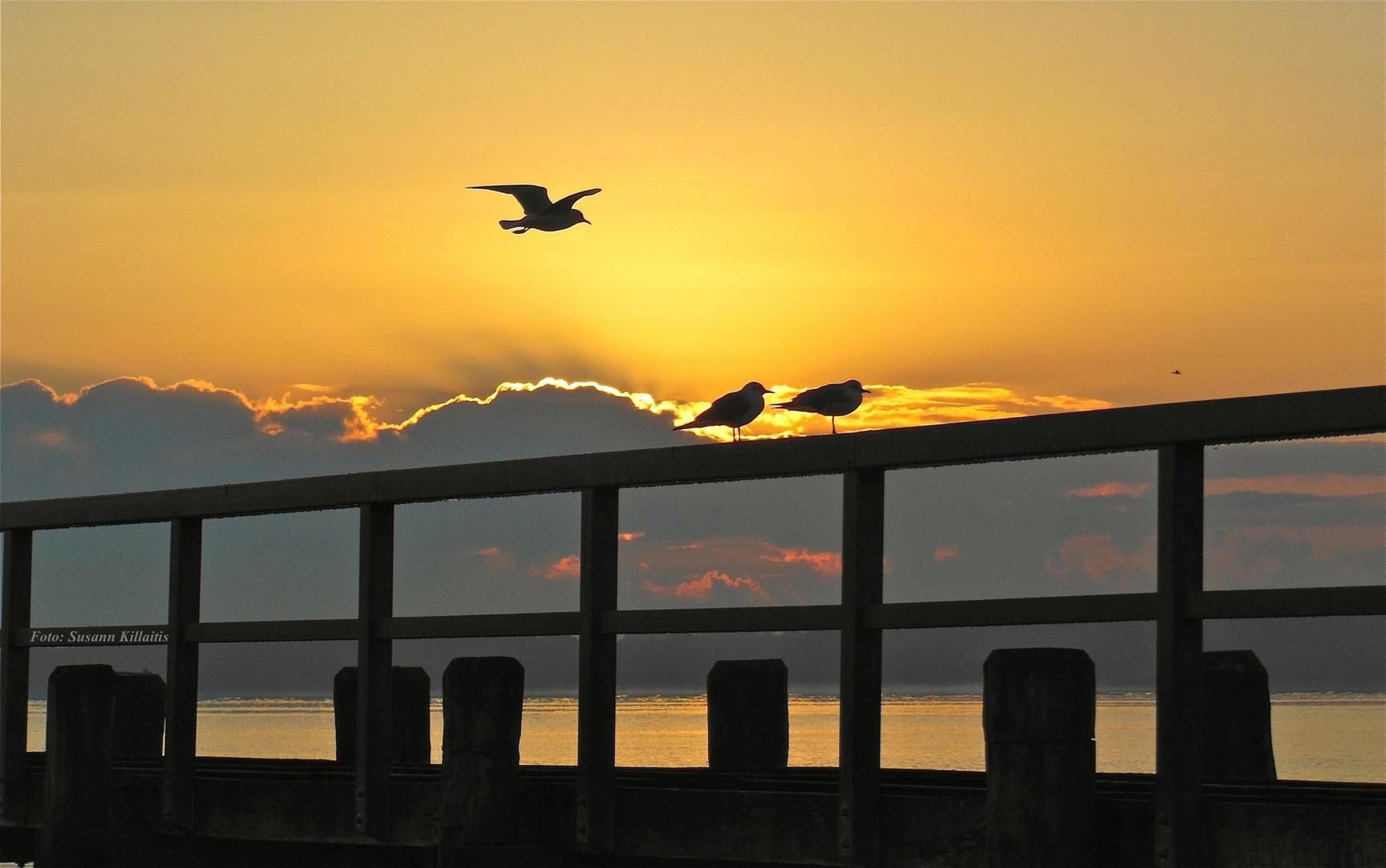 Travemünde-Sonnenaufgang