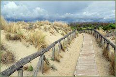 traverser les dunes ....