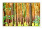 """Tree #121 """"Vor lauter Wald keine Bäume mehr ???"""""""