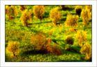 """Tree #135 """"Golden trees"""""""