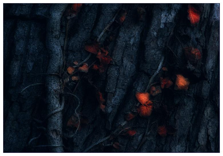 """tree #283 """"Advent an meinen Lieblingsplätzen II"""""""