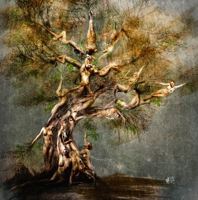_tree of life_