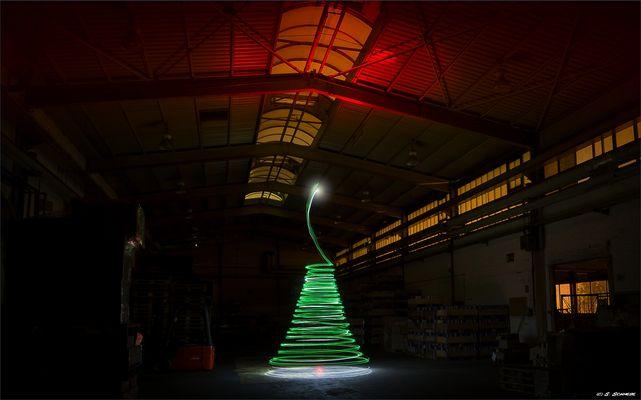 - tree of light -