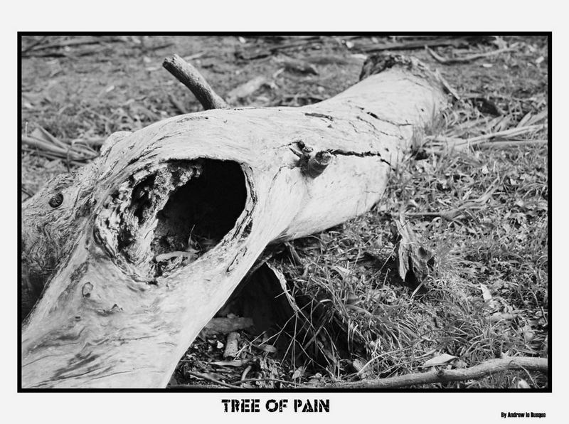Tree Of Pain