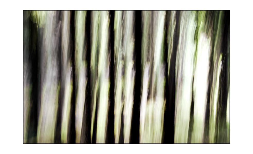 tree_art #03