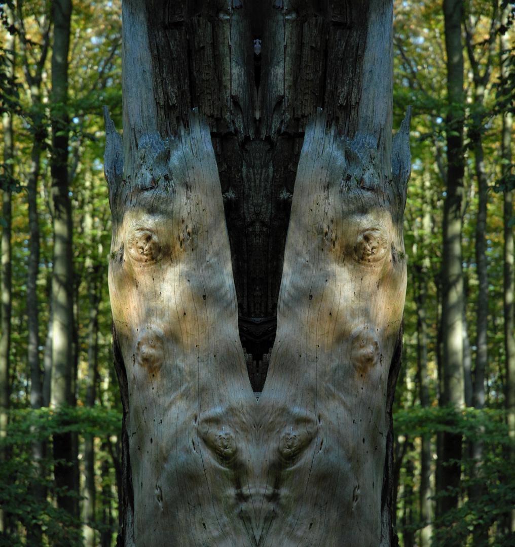 treeface 2
