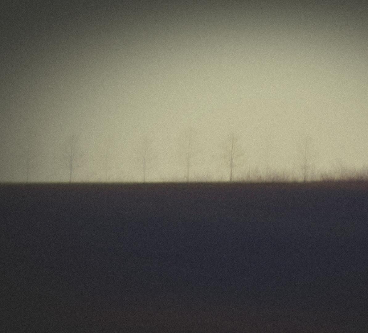 Trees on line..