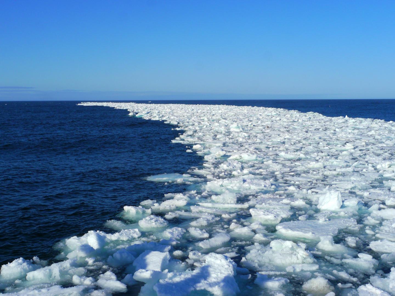 Treibeis vor Spitzbergen