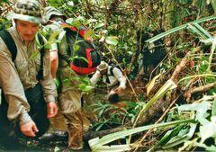 Trekking im Regenwald von West Papua