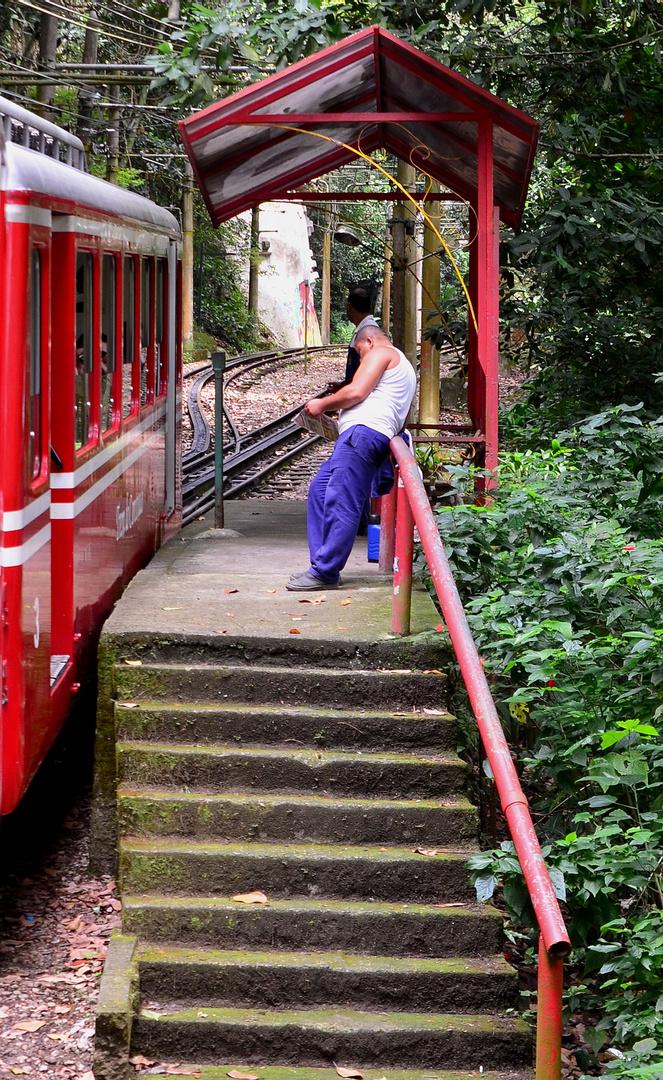 Trem do Corcovado / Rio de Janeiro