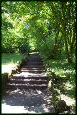 Treppe im Grünen
