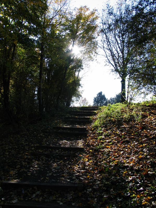 Treppe im Herbst