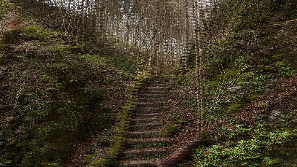 Treppe im (sehr) Grünen