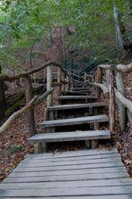Treppe zum Königstuhl