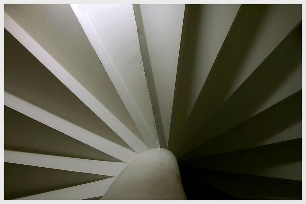 Treppen-BLUME
