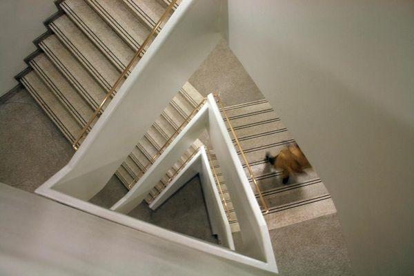 Treppenhaus im Guggenheim an der 5 th Avenue