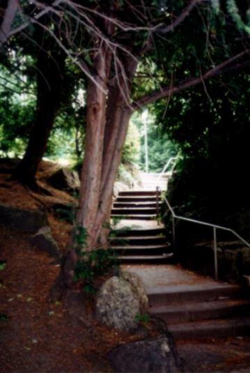 Treppenstufen...