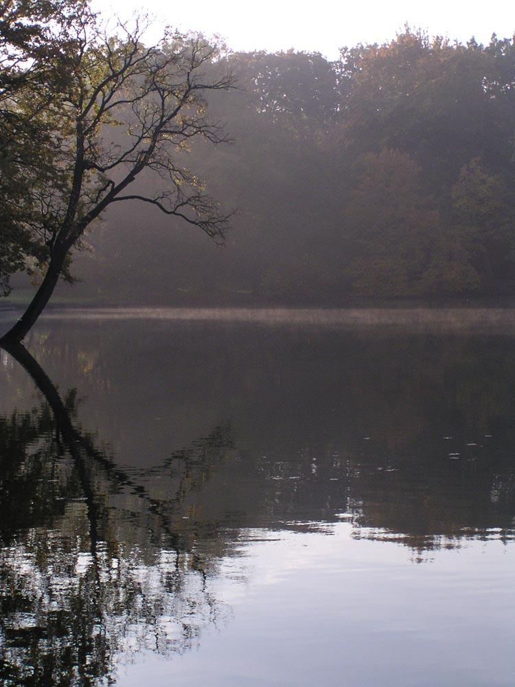 treptower park heut' früh