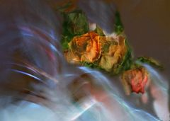 Tres rosas difusas
